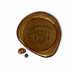 Sponsor a Child Pin